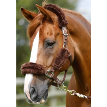 PREMIER-EQUINE-MERINO-WOOL-HEAD-COLLAR-SET-BROWN