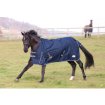 RHINEGOLD-TORRENT-LIGHT-WEIGHT-RUG-NAVY