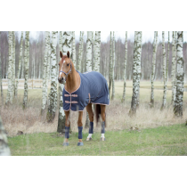 SPECIAL-OFFER-HORZE-SPIRIT-FLEECE-RUG-BLUECOPPER