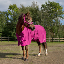 HORZE-SS-18-PONY-FLEECE-RUG-MAGENTA