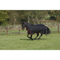 SALE-JHL-HEAVY-WEIGHT-COMBO-TURNOUT-RUG-350G-WAS-9500-ONLY-6FT-LEFT