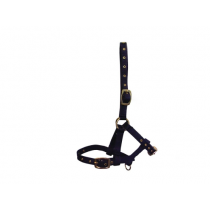 HY-FOAL-NYLON-HEAD-COLLAR