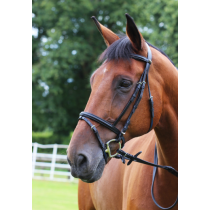 GALLOP-ECONOMY-LEATHER-BRIDLE-PADDED-WITH-RUBBER-REINS-BROWN