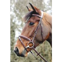 JOHN-WHITAKER-FLASH-BRIDLE-BROWN