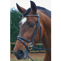 JOHN-WHITAKER-BLING-FLASH-BRIDLE-BROWN