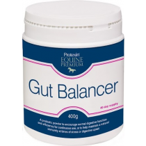 PROTEXIN-GUT-BALANCER-400-GRAMS