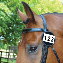 EQUETECH-COMPETITION-NUMBERS-PATENT