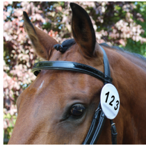 EQUETECH-WHITE-BRIDLE-NUMBER-HOLDER